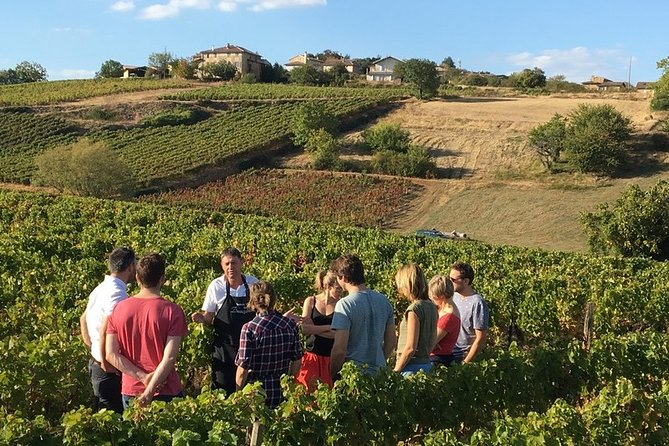 Beaujolais & Perouges Medieval Town - Private Tour - Full Day from Lyon