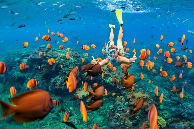 All inclusive; Snorkeling at Blue Lagoon Bali