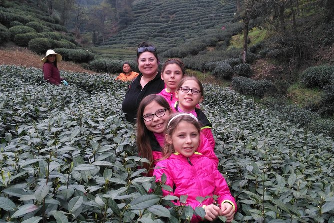 Half-Day Hangzhou Private Tour with Green Tea Village and Lingyin Temple