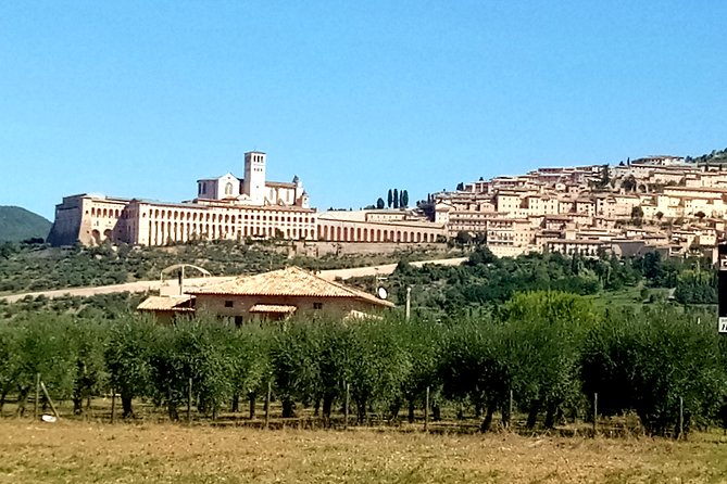 Transfer with stops: Assisi - Florence with stop in Montepulciano and Cortona