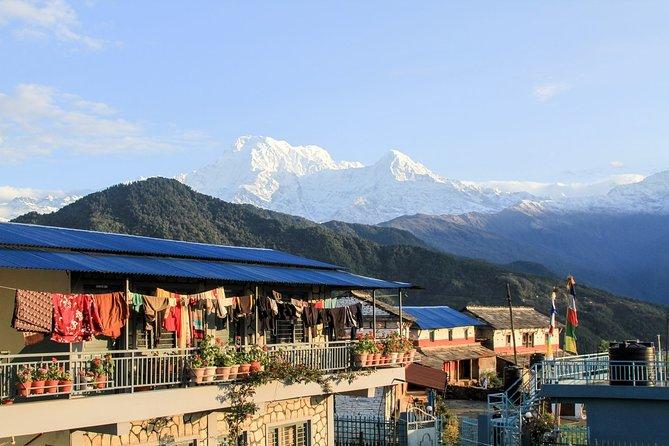 Overnight Dhumpus hiking tour from Pokhara