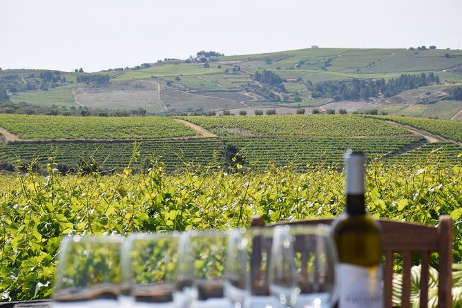 Private Full-Day Tour in Douro Valley