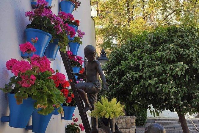 Córdoba Highlight Walking Tour