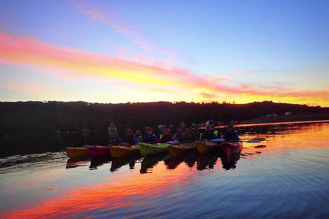 Moonlight / Starlight Lough Hyne kayaking. Cork. Guided. 2½ hours.