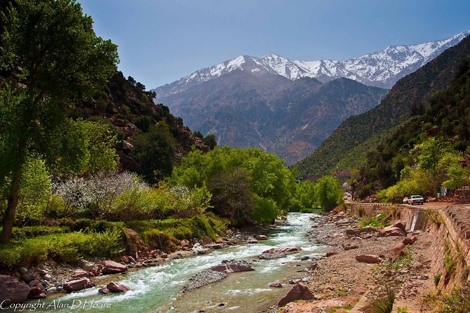 Private Full-Day Tour Ourika Valley from Marrakech with Lunch