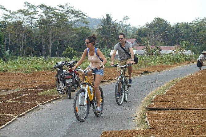 Tour of Borobudur Village by bike
