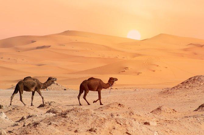 4-Day Sahara Desert Tour from Marrakech with Camel Ride