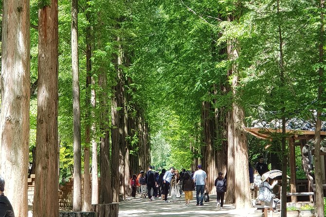 Private Tour including Nami Island with attractions in Seoul