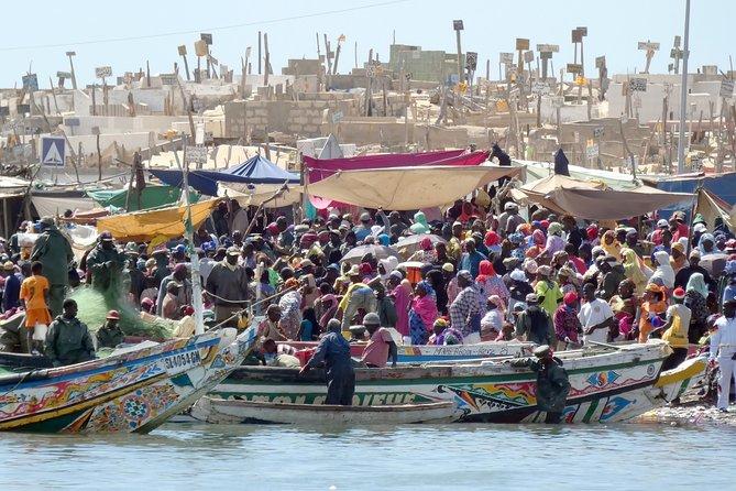 Senegal highlights 8 Days 7 Nights (comfort)