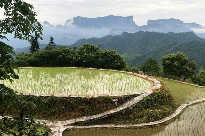 4 Days Zhangjiajie Highlights with Rice Terrace Tour (Classical Boutique Hotel)