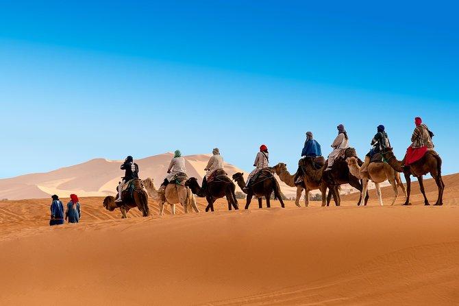 Merzouga Desert Tour (Marrakech- Marrakech) 3D/2N