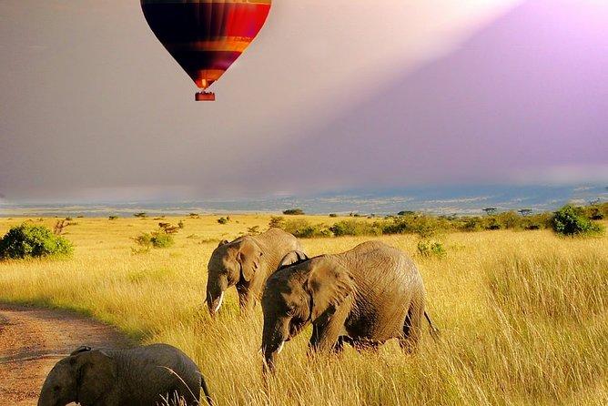 7 Days 6 Nights The Best of Kenya Adventure