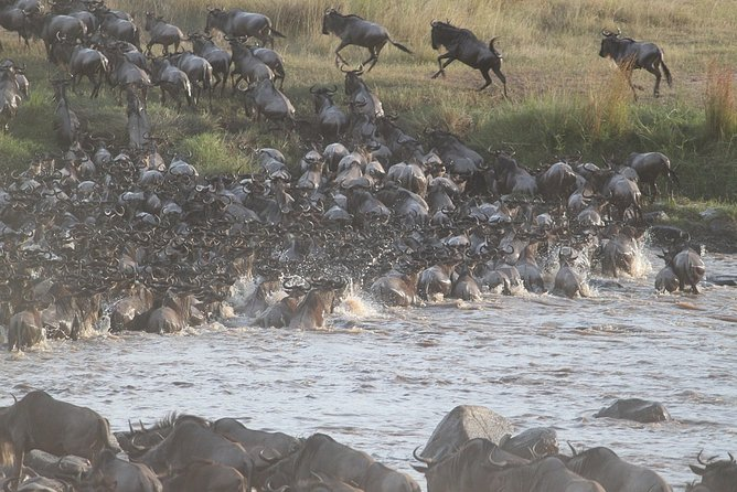 5 Days/4 Nights Kenya Safari