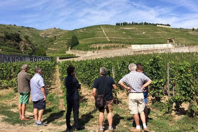 Cotes du Rhone Wine Tour - Private Tour - Full Day From Lyon