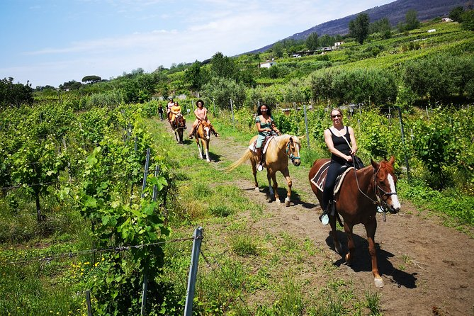 Private Pompeii & Horses & Wine w/ Pick up included