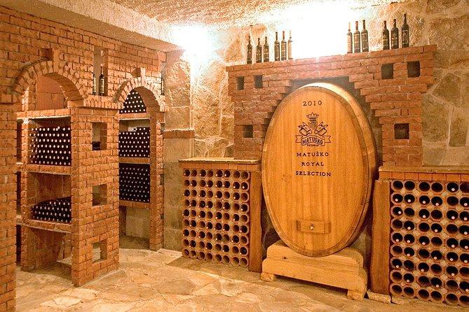 Experience Peljesac all inclusive wine tasting