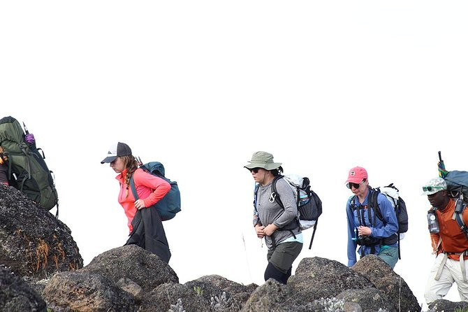 Kilimanjaro climbing - 7 Days Machame Route