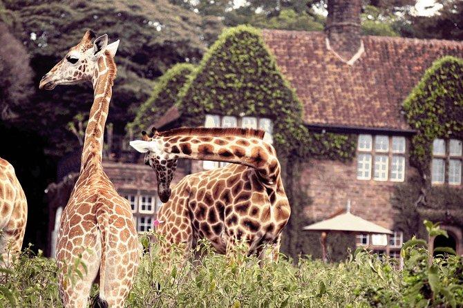 Full-Day Nairobi City Excursion