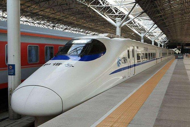 Private Departure Transfer:Shenzhen City Hotel to Any Shenzhen Railway Station