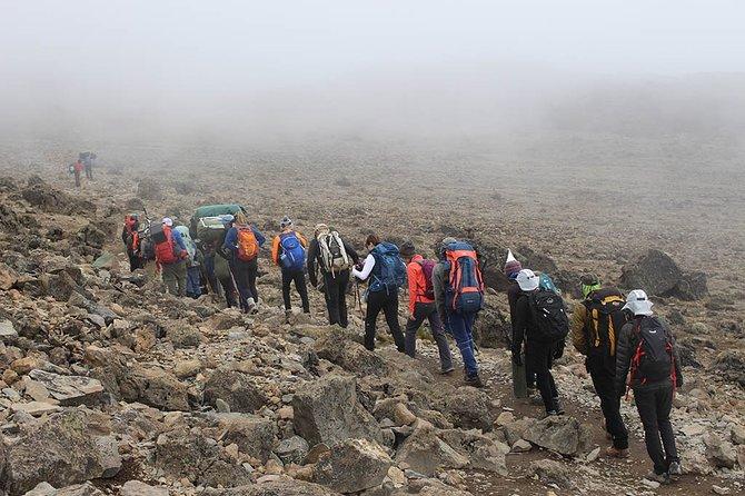 Kilimanjaro Climbing - 7 Days Rongai Route