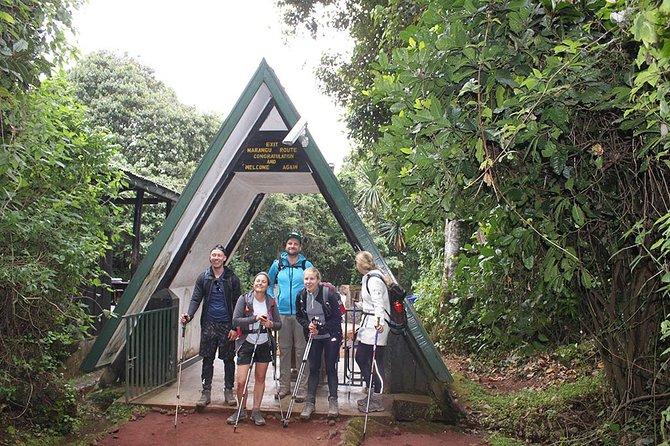 Kilimanjaro Climbing - 5 Days Marangu Route