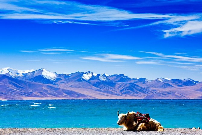 6-Day Small Group Lhasa City and Holy Lake Namtso Tour from Xi'an