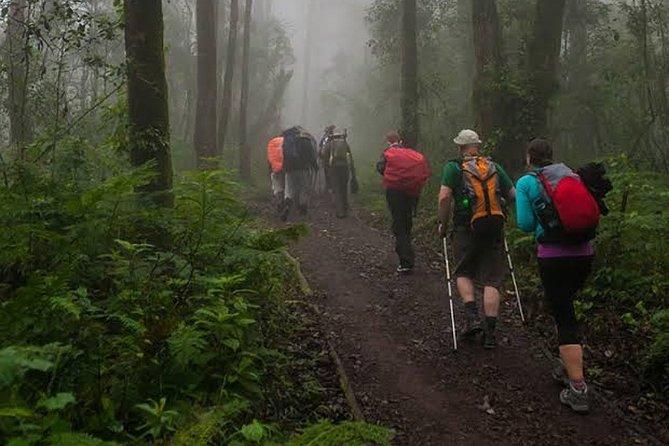 Mount Kilimanjaro 5-Day Trekking Marangu Route
