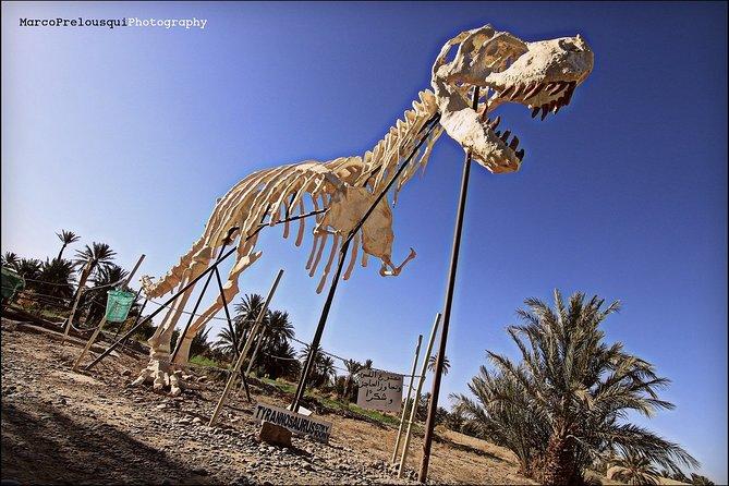 3-Day Private Desert Tour to Merzouga from Fez