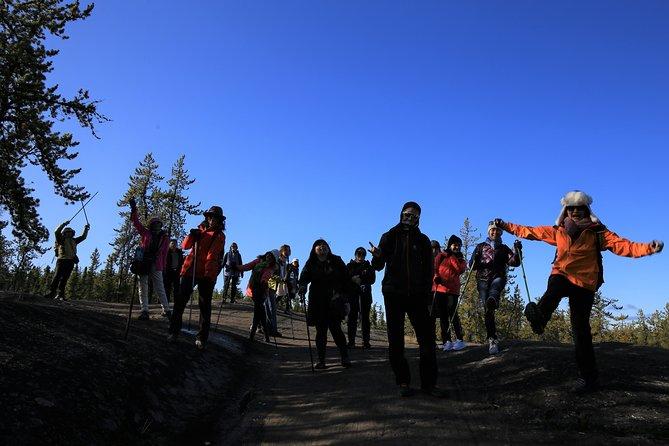 Cameron Falls Hiking Tour