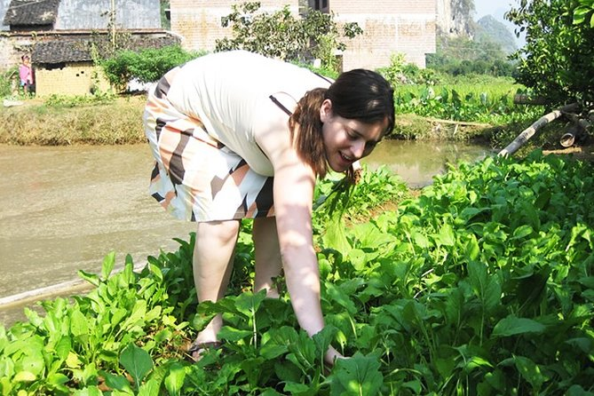 Yangshuo Local Life Experience Half Day Tour