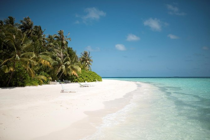 Maafushi: Biyadhoo island resort day trip