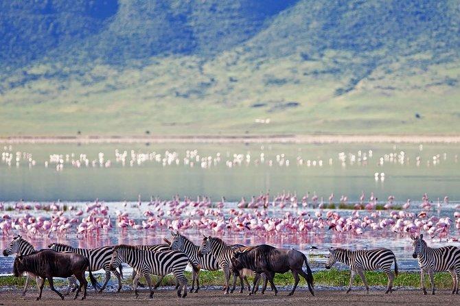 Kenya Tanzania Adventure