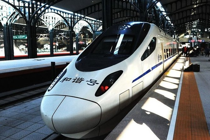 Hangzhou Private Arrival Transfer: Railway Station to City Hotel