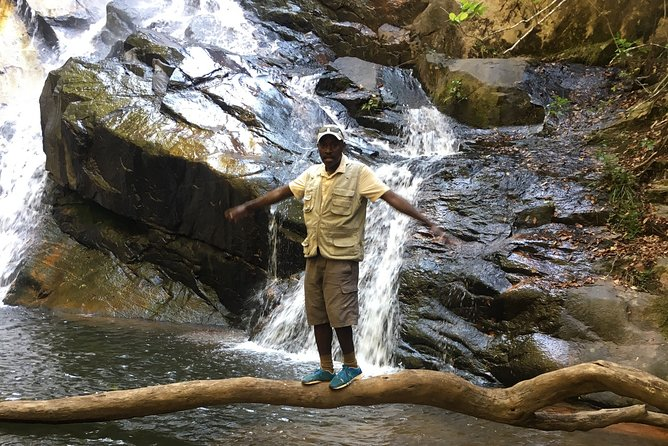 7-Day Private Hiking Adventure in the Vumba Trail
