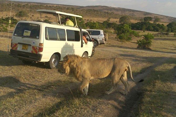 Private Tour: Nairobi National Park, Giraffe Center & National Museum Tour