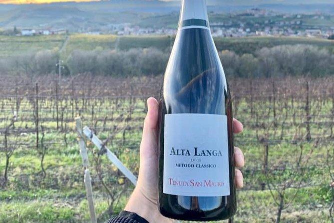 Private Wine Tasting Selection in Castagnole delle Lanze