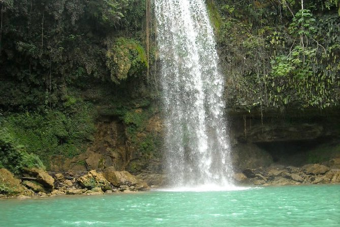 Private Nature Tour of the Waterfalls of the Monte Plata Rainforest