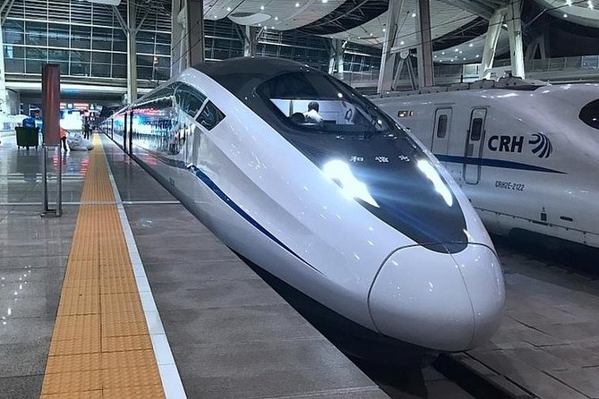 Private Arrival Transfer:Any Tianjin Railway Station to City Hotel