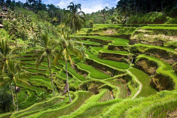Shore Excursion: Customizable Bali Full-Day Tour