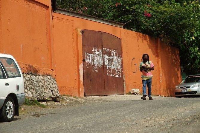 Dunns River Falls plus Bob Marley Nine Mile Private Tour