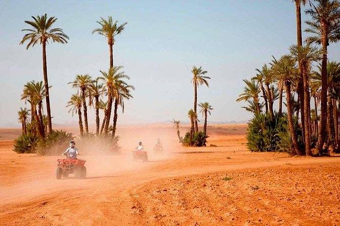 Marrakech Desert and Palm Grove Quad Bike Tour