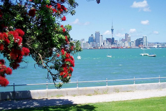 AMERICA's CUP Auckland 2021 - BEAT THE CROWDS - Private Nature Tour - Book Now