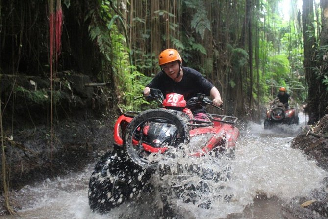 Bali Quad Bike with Ubud Tour