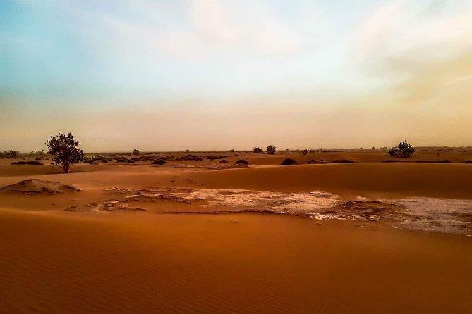 5-day camel trekking in the Moroccan desert