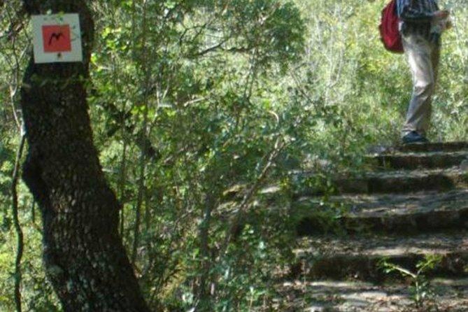 Menalon Trail hiking experience