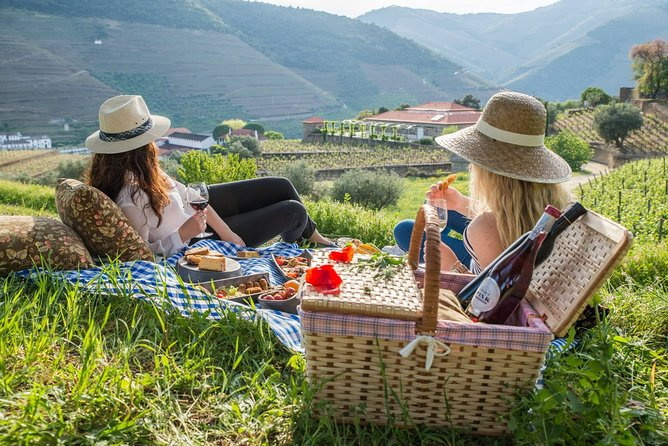 WINE SAFARI in Douro Valley w/picnic, Winery visit and tasting