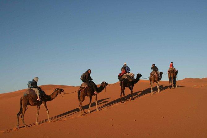1 night bivouac Erg Chebbi Dunes from Todra Gorge - Aventures Verticales Maroc