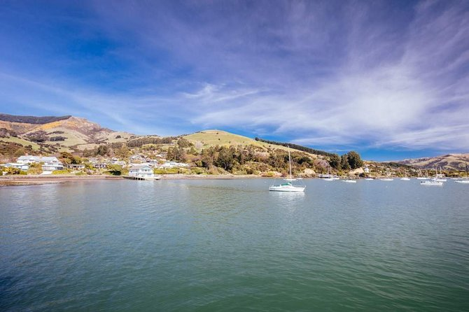 Christchurch & Akaroa tour with Dolphin and Wildlife Cruise by Car