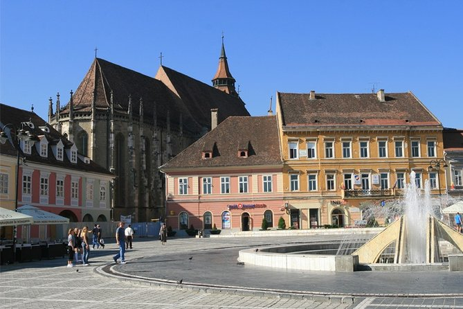 Full-Day Private Tour to Bear Sanctuary, Dracula and Brasov