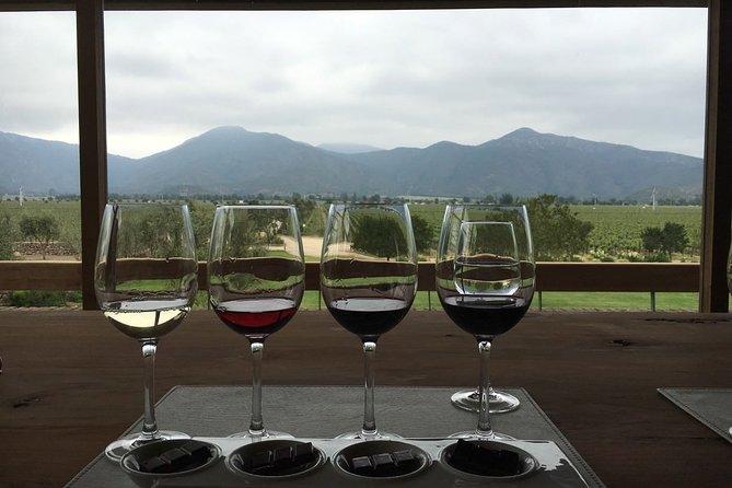 Private Wine Tour in Valparaíso